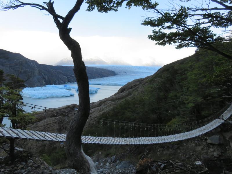 Die erste Hängebrücke auf dem Weg zum Grey Gletscher.