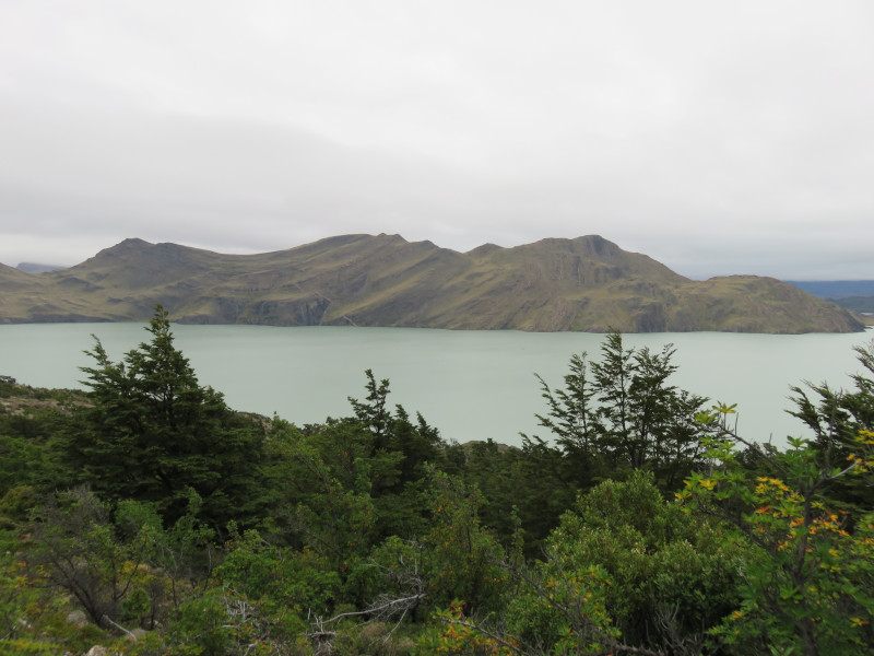 Bild am Fuß des Lago Nordenskjöld im Torres del Paine Nationalpark.